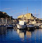 View over the Marina to Citadel and Haute Ville, Bonifacio, south coast, Corsica, France, Mediterranean, Europe