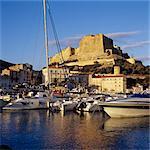 Blick über die Marina auf der Zitadelle und Haute Ville, Bonifacio, Südküste, Korsika, Mittelmeer, Europa