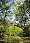 Ancient stone bridge near Kipi, Zagoria, Epirus, Greece, Europe