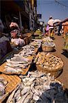 Fish stall, Mapusa Market, Goa, India, Asia