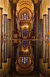 Suchen Sie die Schriftart und nach unten das Hauptschiff der Kathedrale von Salisbury, Wiltshire, England, Vereinigtes Königreich, Europa