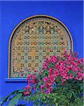 Window in Blue House, Jardin Majorelle, Marrakech, Morocco