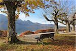 Bench at Kochelsee in Autumn. Kochel am See, Bad Tolz-Wolfratshausen, Upper Bavaria, Bavaria Germany.