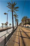 Tram line running along a sunny Mediterranean beach
