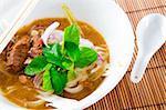 Famous Malaysian Spicy Soup Noodles, Penang Asam laksa