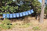 Kleidung trocknen am Seil mit Zahlen geschrieben