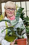 Portrait d'une femme senior heureuse holding comme plante en pot