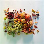 Un arrangement automnal des raisins, poires, baies d'églantier et grenades