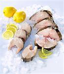 Fresh cod and haddock steaks