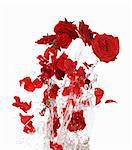 Pétales de rose rouges attention