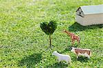 Animals Model On Grassy Field