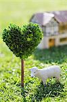 White Sheep Model On Grassy Field