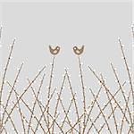 Beautiful spring willow twig and birds closeup