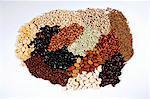 Beaucoup de différents types de haricots