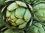 Close Up of Artichoke at Saturday morning Market, Geneva, Switzerland