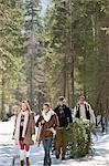 Sourire de couples avec des arbres de Noël coupés frais et traîneau en bois enneigés