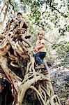 Children climbing tree together