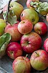 Pommes fraîches avec des feuilles et des brindilles