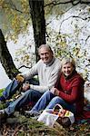 Senior couple ayant pique-nique en bois