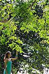 jeune femme toucher les feuilles d'arbre