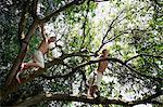 deux jeunes garçons en arbre