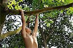 jeune garçon pendu à arbre