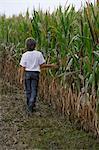 boy walking along corn field