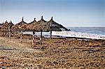 Parasols sur la plage sur l'île de Djerba, Tunisie
