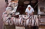 Étal de poisson Ver p Peso marché, Belem, Amazonie, Brésil, Amérique du Sud