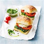 Tomato,mozzarella and green sauce  toasted sandwich