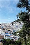 Vue d'ensemble de la ville, Chefchaouen, Province de Chefchaouen, région de Tanger-Tétouan, Maroc
