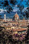 Vue de la Basilique de Santa Maria del Fiore entourée de Branches d'arbres, Florence, Toscane, Italie