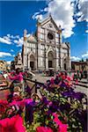 Basilica of Santa Croce, Piazze Santa Croce, Florence, Tuscany, Italy