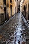 Wet Cobblestone Street, Florence, Tuscany, Italy
