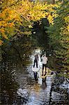 Deux personnes paddle conseils d'aviron dans les arbres de l'automne, vue surélevée