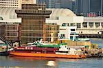 Hong Kong & China ferry pier, Tsimshatsui, Kowloon, Hong Kong