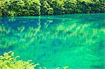 Fünf Blumen-See (Wuhuahai), Jiuzhaigou, Provinz Sichuan