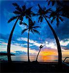 Silhouette de palmiers au coucher du soleil, la plage de Nippah, Lombok, Indonésie, Asie du sud-est, Asie