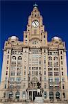 Foie de construction, Pierhead, patrimoine mondial de l'UNESCO, Liverpool, Merseyside, Angleterre, Royaume-Uni, Europe