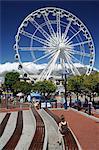 Grande roue, le Waterfront, Cape Town, Afrique du Sud, Afrique