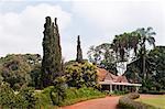 Karen Blixen's house, Nairobi, Kenya, East Africa, Africa