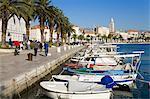 Fishing boats on the waterfront, Split, Dalmatian Coast, Croatia, Europe