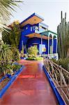 Jardins de Majorelle, Marrakech, Maroc, l'Afrique du Nord, Afrique