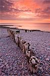Weathered wooden coastal defences on Bossington Beach, Exmoor National Park, Somerset, England, United Kingdom, Europe