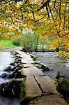 Tarr Steps clapper bridge in autumn, Exmoor National Park, Somerset, England, United Kingdom, Europe