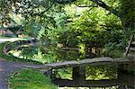 Passerelle de Pierre au-dessus de le œil de rivière dans les Cotswolds village de Lower Slaughter, Gloucestershire, les Cotswolds, Angleterre, Royaume-Uni, Europe