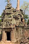 Ta Prohm, Angkor parc archéologique, patrimoine mondial de l'UNESCO, Siem Reap, Cambodge, Indochine, l'Asie du sud-est, Asie