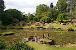 Visiteurs dans le Royal Botanical Garden, Peradeniya, Kandy, Sri Lanka, Asie
