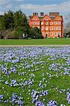 Pracht der Blumen im Rasen nahe Kew Palace in den Royal Botanic Gardens, Kew, UNESCO Weltkulturerbe, London, England, Vereinigtes Königreich, Europa, Frühling Schnee