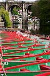Rowing Boats on the River Nidd,  Knaresborough, North Yorkshire, England